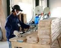 Dây đai dẹt nghành gỗ